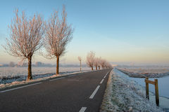 Horarfrost in Boterhuispolder. A wintery sunrise in the Boterhuispolder of Leiderdorp, the Netherlands. The trees are covered with hoarfrost Stock Images