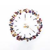 Horas de partidos y de flores quemados en un fondo blanco Imagen de archivo