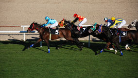 Horce Racing. Ankara, Turkey - October 29, 2011 - October 29 Republic Day horse races at Hippodrome Royalty Free Stock Image