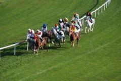 Horce Racing. Ankara, Turkey - October 25, 2011 - Horses and jockeys during races at Hippodrome Royalty Free Stock Photos