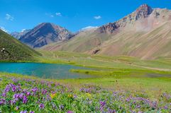 Horcones lake at the Aconcagua valley Royalty Free Stock Photos
