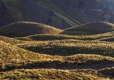 Horcones-Tal in Mendoza-Provinz, Argentinien Lizenzfreies Stockbild