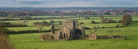 Hore修道院在Cashel 免版税库存照片