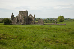 Hore abbotskloster, Cashel, Irland Arkivfoto