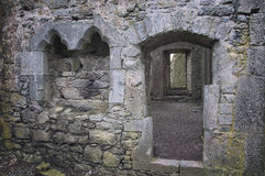 Hore abbotskloster i Cashel Royaltyfri Fotografi