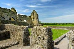 Hore-Abtei, ruiniertes Cistercian Kloster nahe dem Felsen von Cashel, Irland Stockbild