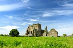 Hore-Abtei, ruiniertes Cistercian Kloster nahe dem Felsen von Cashel, Irland Lizenzfreie Stockfotos