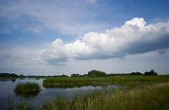 Horicon Marsh, Wisconsin. Beautiful day at Horicon Marsh in southern Wisconsin stock photography