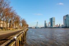 Horisont av Rotterdam, Nederländerna Arkivfoto