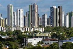 Horisont av skyskrapor och låghus- hus, Brasilien Arkivbild