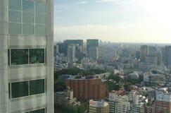 Horisont av Tokyo Japan royaltyfria bilder