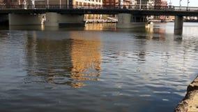 Horisont för stad för Milwaukee strandflod flödande i stadens centrum stock video
