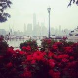 Horisont från Jersey City Royaltyfria Foton