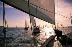 horisont som seglar till Arkivbild