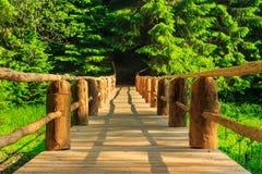 Horisontal drewniany most znika w lesie Obraz Stock