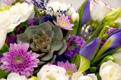 Horisontalbakgrund från en närbild av en vårbukett av blommor i lila och purpurfärgade färger royaltyfria bilder