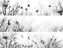 Horisontalbaner av skogen med trädfilialer och fåglar Arkivbild