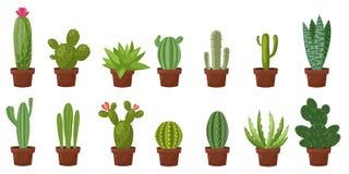 Horisontalbaneruppsättning av öknen, grön kaktus för rum Lägenhet tecknad filmstil Bakgrund för vektorillustrationvit Beståndsdel Arkivfoton