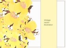 Horisontalblom- modell för kort med jasmin Vektorillustra Royaltyfri Bild