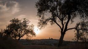 Horisontallandskap av montilla på solnedgången arkivbilder