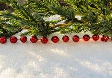 Horisontallinjen av röda bollar och sörjer trädfilialen royaltyfri foto