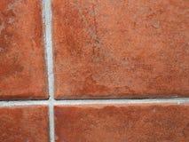 Horisontalrektangulär belagd med tegel vägg i badrum royaltyfri bild