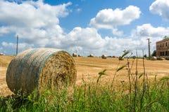 Horisontalsikt av ett kornfält med några baler av hö på Parti Royaltyfri Fotografi