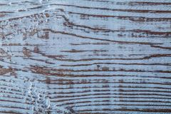 Horisontalsikt för Longstanding naturlig träkuliss arkivbild