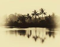 Horisontaltappningsepia gömma i handflatan reflexioner på sjön Royaltyfri Foto