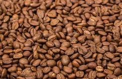 horisontaltextur för tätt kaffe upp kaffebönor som bakgrundstapeten arabicacofeeböna Arkivbilder