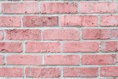 Horisontalvägg för tegelsten för färg för pastellfärgade rosa färger för tappning Bakgrund för design Royaltyfri Foto