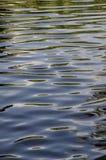 Horisontalvågmodell med abstrakta reflexioner Arkivbild