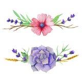 Horisontalvattenfärguppsättningar av suckulent, sidor, blomma och gamla filialer För inbjudningar hälsningkort, räkningar Vektor Illustrationer