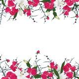 Horisontalvektorram för blom- prydnad Royaltyfria Bilder