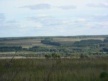 Horisonten täckas med vegetation längs kullarna Arkivbilder