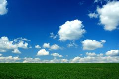 Horizon. Green field, blue sky and white clouds Royalty Free Stock Photos
