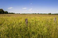 horizon Image stock