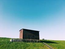 Horizon blauwe hemel en groen gras Stock Foto