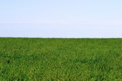 Horizon and the blue sky. royalty free stock photography