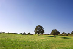 Horizon countryside Royalty Free Stock Photo