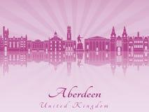 Horizon d'Aberdenn dans l'orchidée rayonnante pourpre Images libres de droits
