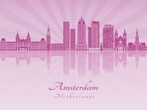 Horizon d'Amsterdam V2 dans l'orchidée rayonnante pourpre illustration de vecteur