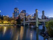Horizon de Calgary la nuit Image stock