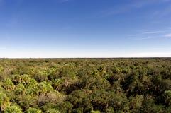 Horizon de la Floride photos libres de droits