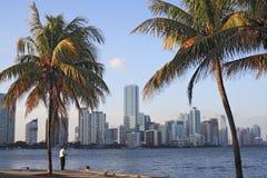 Horizon de Miami Photo libre de droits