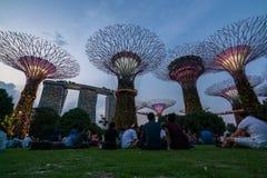 Horizon de nuit de Singapour aux jardins par la baie Photos stock