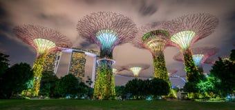 Horizon de nuit de Singapour aux jardins par la baie Photographie stock libre de droits