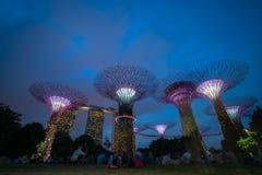 Horizon de nuit de Singapour aux jardins par la baie Photographie stock
