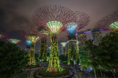 Horizon de nuit de Singapour aux jardins par la baie Images libres de droits