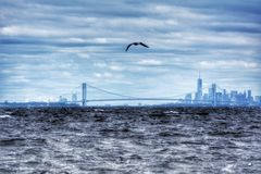Horizon de NYC Photos libres de droits